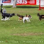 Grand Prix Bratislava 2014   boli sme pri tom