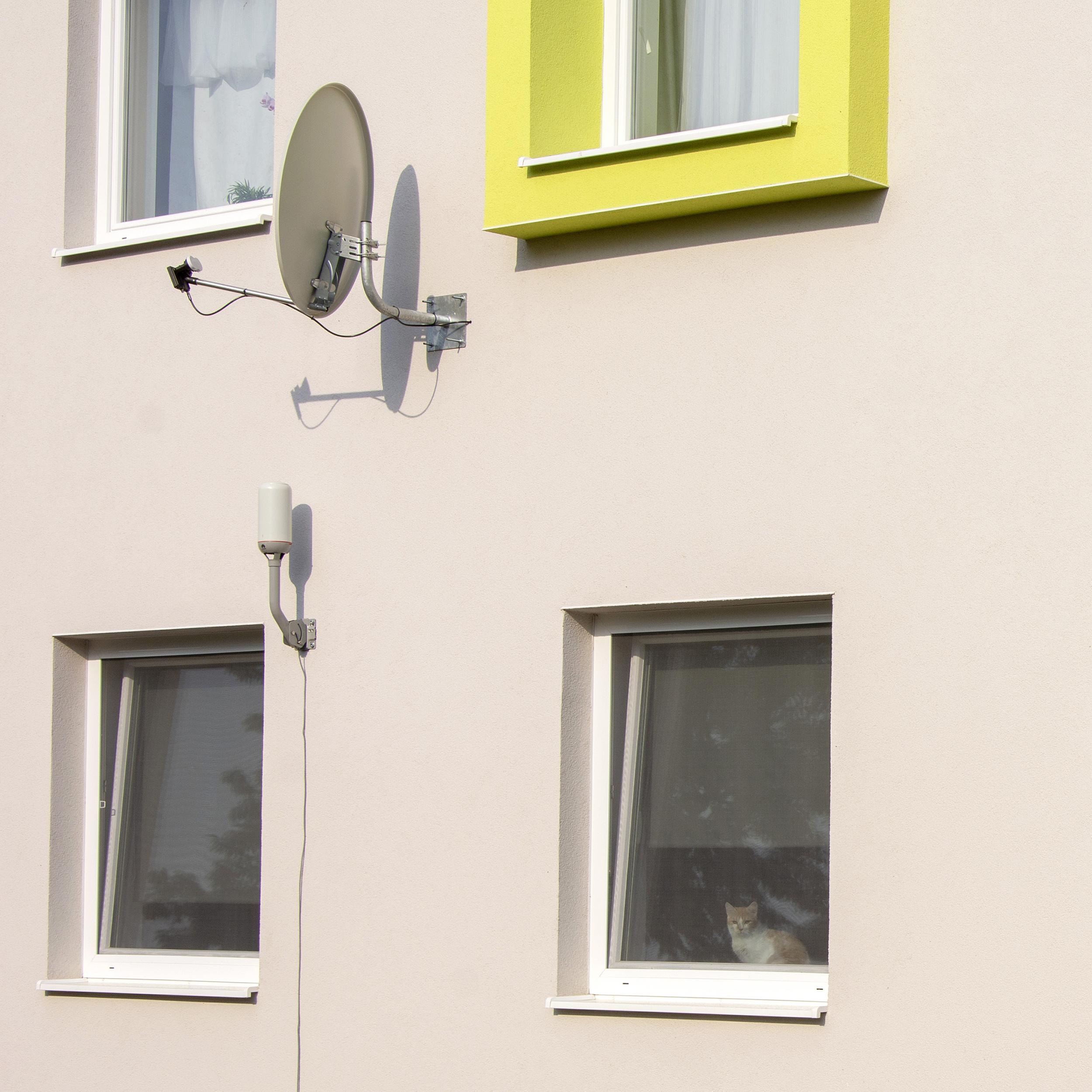 Bytový dom v Pažiti, mačka za oknom Slovaktual